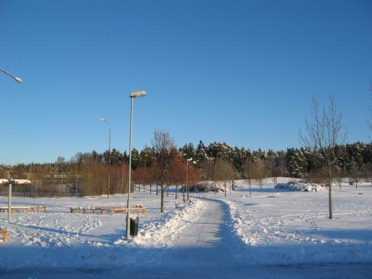 Walking Path Home, Linkoping