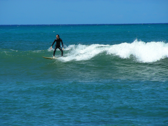 Monkey Surfing Paia Bay
